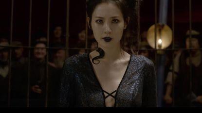 Trailer van nieuwe 'Fantastic Beasts'-film verklapt een heel goed bewaard Potter-geheim