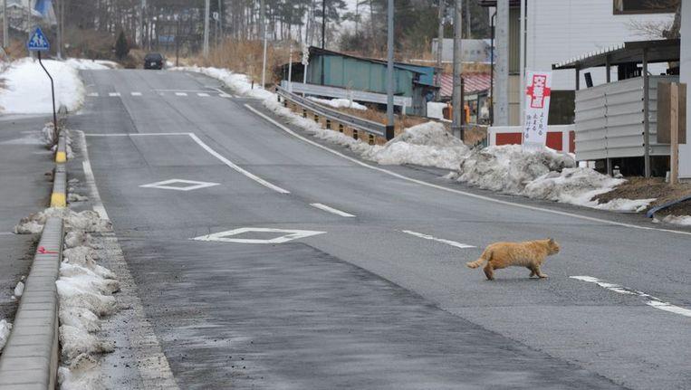 Lege straten in de prefectuur Fukushima. Beeld afp