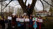 Kinderen De Tinteltuin strijden voor 'hun' wilg