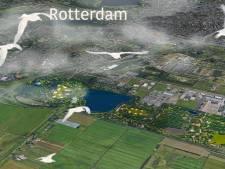Onderzoek naar vertrek luchthaven Rotterdam The Hague Airport