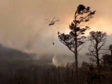 Muur van vuur overspoelt Siberië: dieren verminkt en bewoners dakloos