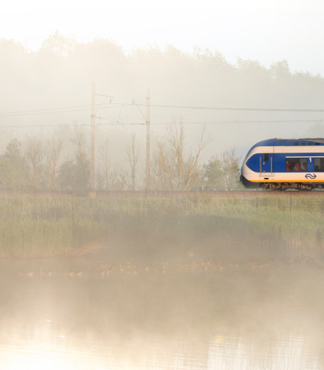 Snelle Jelles voor spitstrein in Harderwijk en Nijkerk