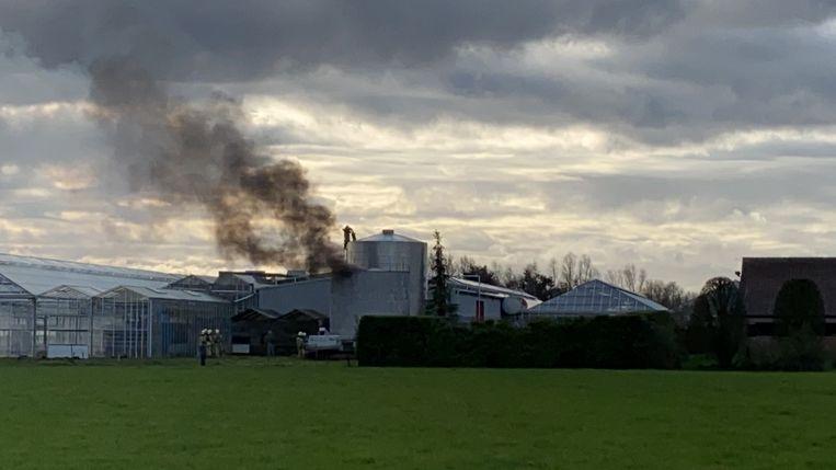 Op de terreinen van een voormalig tuinbouwbedrijf vatte een silo met stookolie vuur.