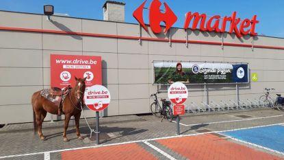 """""""Ga zaterdag te paard naar supermarkt"""": ruiter plant ludiek protest nu dat paardrijden op openbare weg verboden is"""