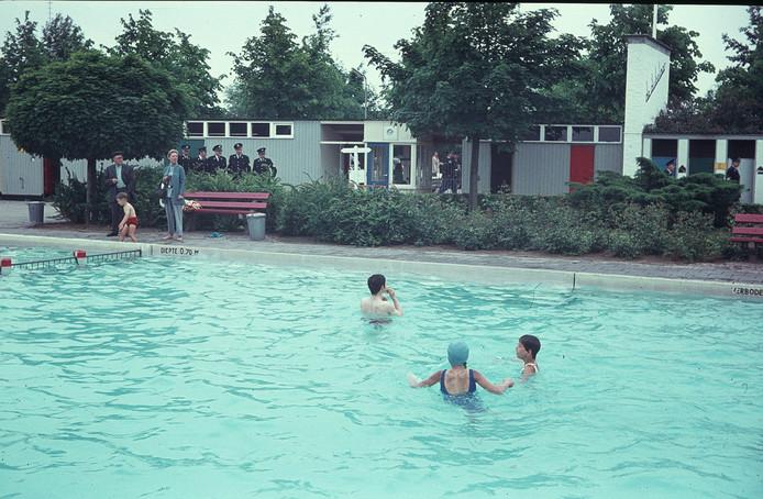 Zwembad De Duikelaar.Hoe Zwembad De Duikelaar Veranderde Van Trefpunt Tot