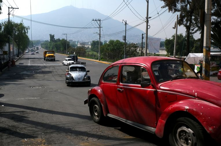 """Drivers commute in their Volkswagen Beetles in a neighborhood of Mexico City known colloquially as """"Vocholandia,"""" for its love of the classic Beetle, called """"vocho"""", Tuesday, July 9, 2019. The sputtering, bulbous, back-engine cars are ever-present here, an obsession for some after production of the Type 1s stopped in 2003 and the New Beetle failed to impress most locals. (AP Photo/Cristina Baussan)"""