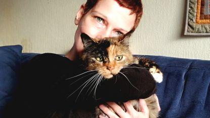 Wijgmaalbroek nog steeds in ban van kattenhater: opnieuw diertje gestorven door vergiftiging