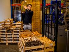 Deze eigenwijze 32-jarige bestiert de grootste exporteur van exotische paddenstoelen in Europa