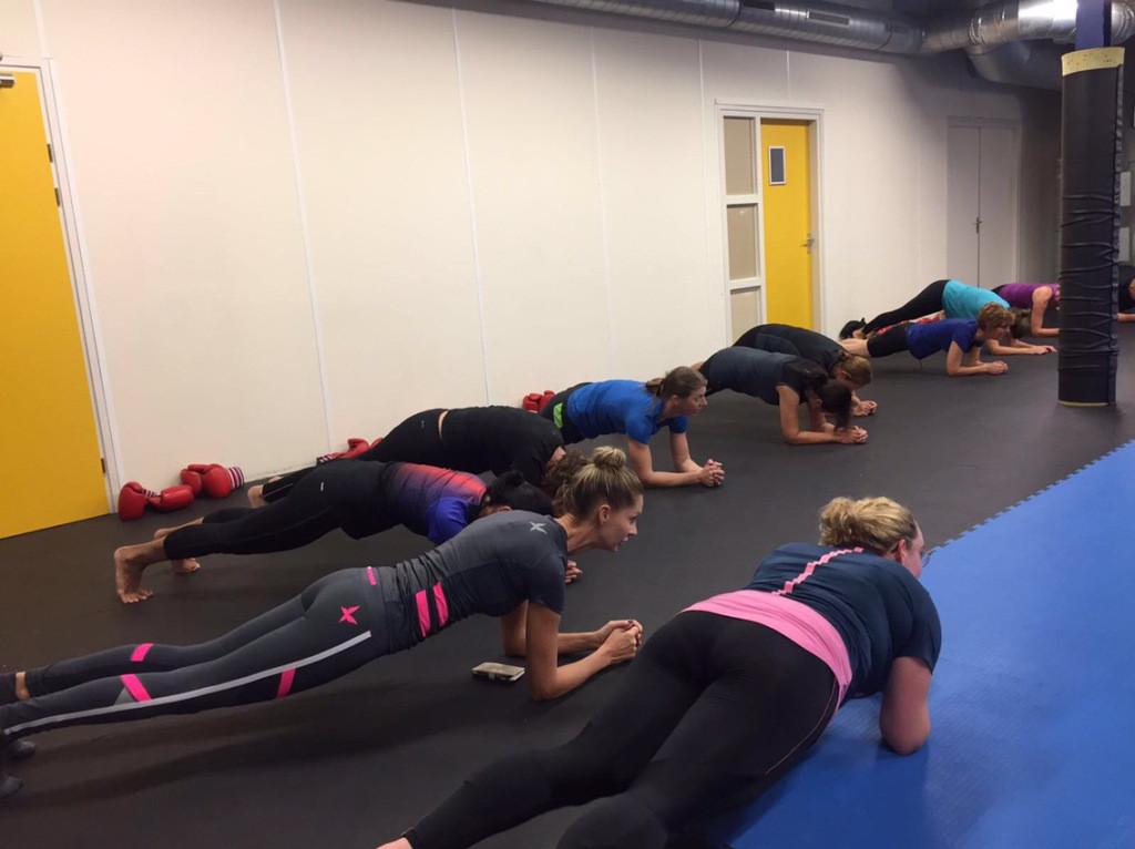 Planken bij boksles
