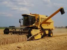 Oosthoek (86) oogst tarwe met z'n 'oldtimer'