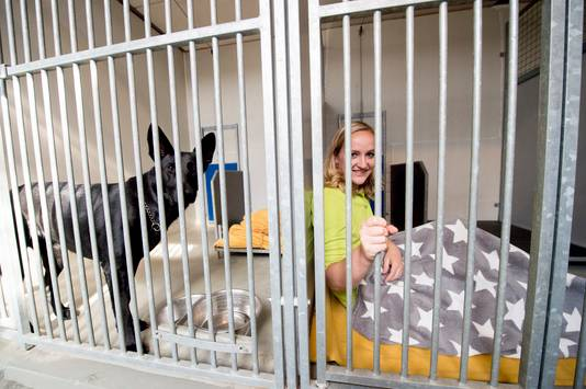 Nicole Kouwen van dierenasiel Kuipershoek oefent alvast. Binnenkort kunnen mensen een nacht doorbrengen in het dierenasiel.