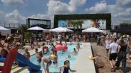 Populaire zomerbar Zanzibar wil naar Wolvertem: strijkt paradijselijke setting naast containerpark neer?
