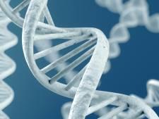 DNA verraadt Tilburgse inbreker