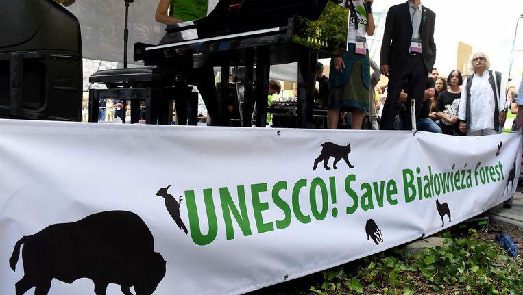 Een manifestatie in Krakow tegen de kap van hout in Bialowieza. Beeld afp