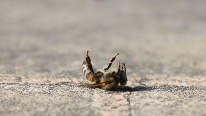 """België laat schadelijke pesticiden weer toe """"om bijen te beschermen"""""""