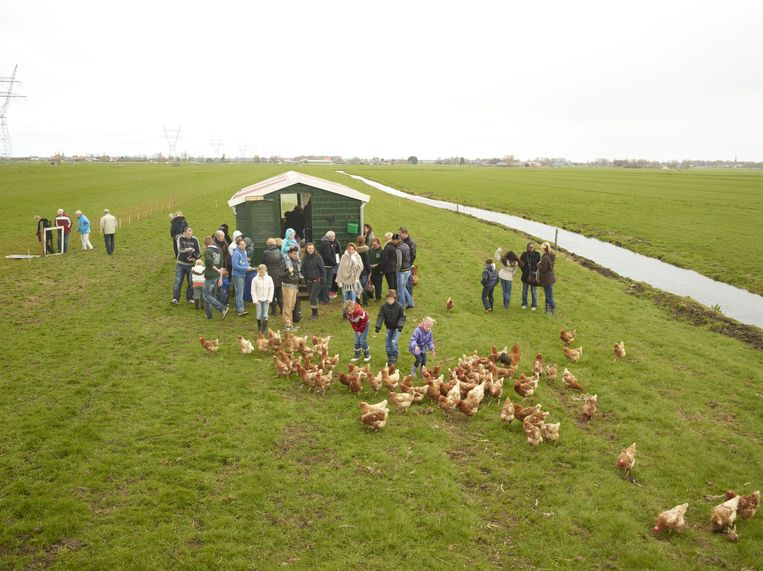 Bezoekers bij zorgboerderij Ons Verlangen in Zunderdorp. Beeld Henk Wildschut
