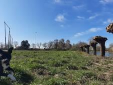 Doesburg krijgt nieuw parkje: 'positief nieuws in crisistijd'