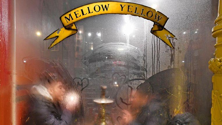 De Mellow Yellow, waar de zware wietwalm donderdagavond niet onderdoet voor dikke mist buiten. Beeld Guus Dubbelman / de Volkskrant