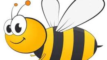 Bijen centraal in de bib