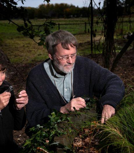 De verzameling van Jan en Riek: duizenden envelopjes met mos én zeldzame nachtvlinders