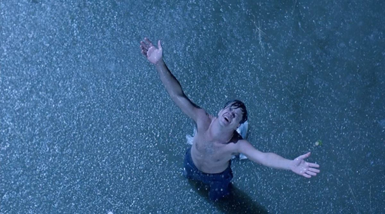 Tim Robbins in The Shawshank Redemption (1994)