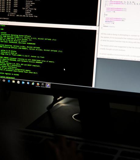 Cybercriminelen kapen bestelformulier webshops