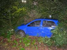 Vrouw schiet met auto bosjes in bij Vorden