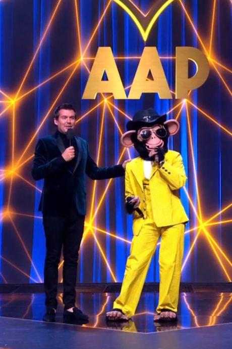 Bijna 3 miljoen kijkers zien ontmaskering van bekende influencer bij The Masked Singer