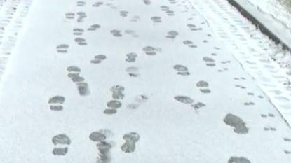 Eerste laag sneeuw in Hoog-België een feit