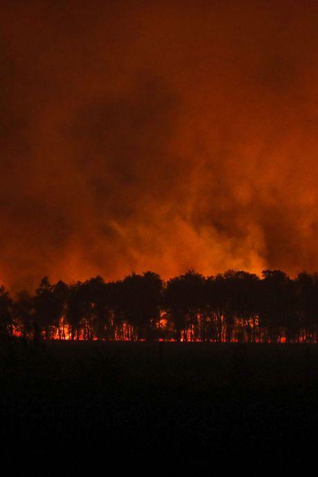 Bewoners Peel willen weten hoe het met de brand zat: 'Lopen we in de toekomst weer gevaar?'