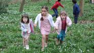 Kinderen Beukenbos mogen al op paaseitjesjacht