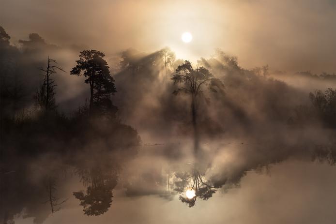 Winnende foto van Brabant in Beeld 2017: mist die door de bomen wordt geblazen in het bos in Oisterwijk. Gemaakt door Gijs de Reijke.