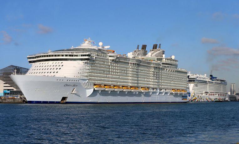 Cruiseschepen in de haven van Miami