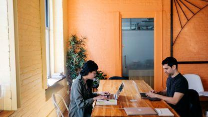 Werken bij een start-up of een multinational: waar zit het verschil?