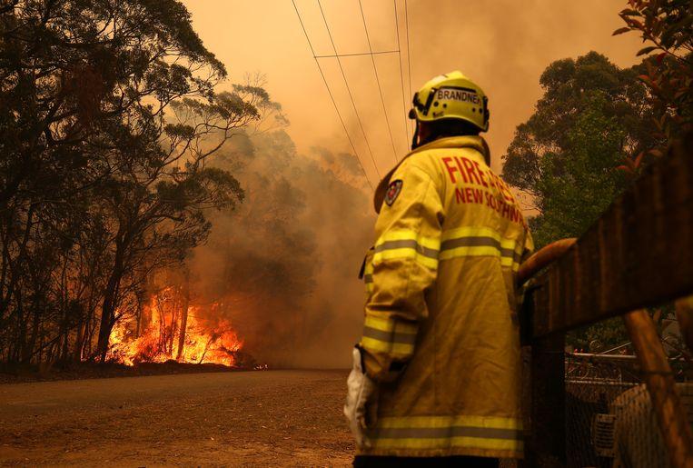 Een brandweerman bij het stadje Bilpin nabij Sydney.  Beeld Getty Images