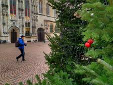 Iemand heeft eerste kerstballen gehangen in grootste kerstboom op Burg
