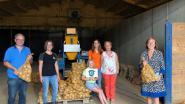 Aardappelbedrijf van zussen Vanhoebroeck is de nieuwe Korte Keten Kop van Vlaams-Brabant