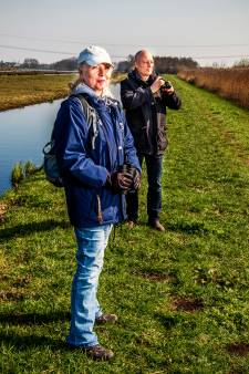Aangepakte polders Krimpenerwaard zijn paradijsjes voor vogels én vogelaars