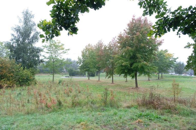 Het RUP voorziet zeventig nieuwe woningen in de groene zone van het Hazelbospark.