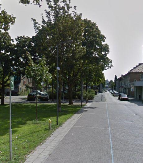 Dertien koopwoningen en 32 huurappartementen op locatie oude school Boschveld