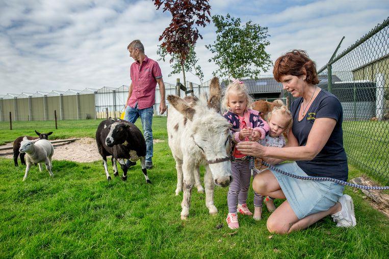 Kees en Elly Buis runnen een boerenkinderdagverblijf in Hensbroek. Het gaat om een zogeheten multiboer, een boer die naast een agrarisch bedrijf er iets bij doet. Beeld Jean-Pierre Jans