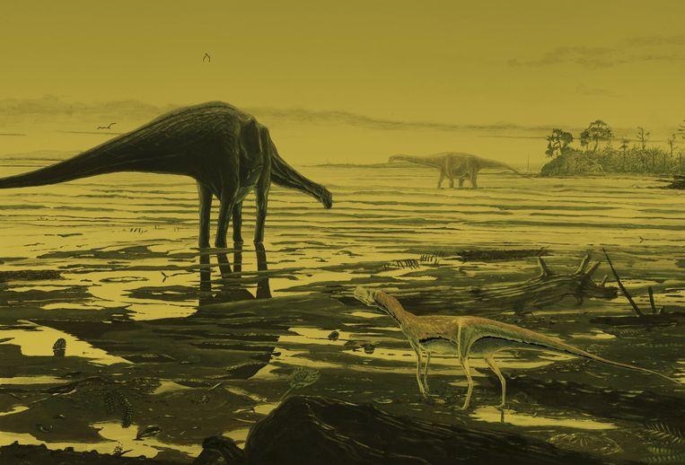 Een artistieke impressie van sauropoda.