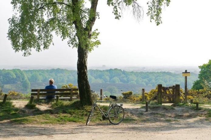 Nationaal Park Veluwezoom.