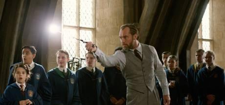 'Fantastic Beasts krijgt spin-off met Jude Law als Perkamentus'