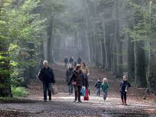 Rustig en droog weer dit weekend in Brabant, zondag kouder