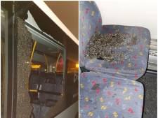 Vrouw die zeven Eindhovense stadsbussen beschoot gaat nu al naar kliniek