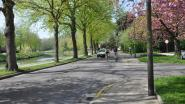 """Corona-fietsstraat Henleykaai-Neermeerskaai opgeheven: """"Weer te veel auto's op de weg"""""""