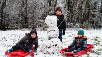 Waarom er minder sneeuw viel in Limburg dan verwacht