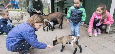 Nijverdalse omwonenden zien komst kinderboerderij nog steeds niet zitten