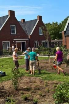 Hoeksche Waard wil gaan voor 'hippe' woonvorm Knarrenhof: jong en oud door elkaar